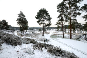 Snow at Parkstone Golf Course, Poole 1, February 2015