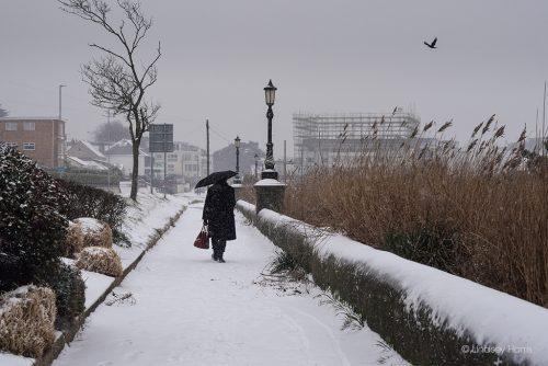 Snow at Shore Road, Sandbanks, Poole, March 2018.