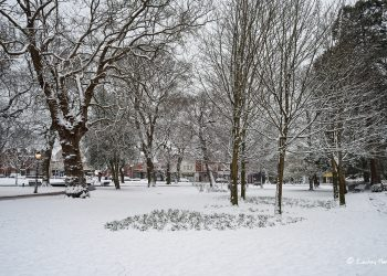 Snow at The Green, Parkstone Park, Ashley Cross