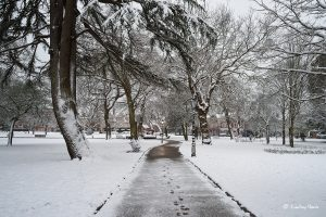 Snow at Parkstone Park, Ashley Cross, Lower Parkstone, Poole