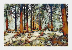 Greetings card - Autumn Trees, New Forest, Hampshire.