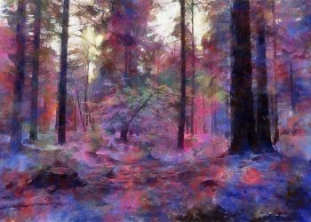 'Bolderwood 2' - Trees at Bolderwood, New Forest, UK. Art greetings card by Lindsey Harris.